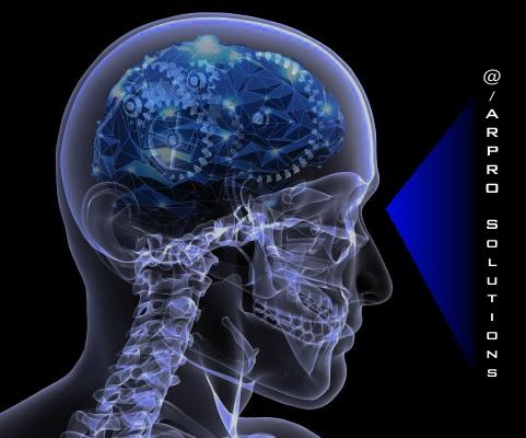 software Evolution Brain